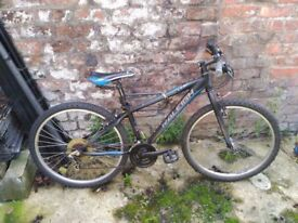 Medium black bike