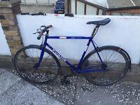 Evans Reynolds 531 single speed 22 inch bike bicycle