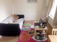 1 DOUBLE BEDROOM - in PERIOD HOUSE - Coldharbour Lane, London, SE5