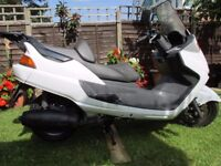 yamaha yp majesty 250 scooter for sale