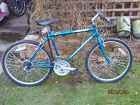 PROFESSIONAL ASPEN MTB ONE OF MANY QUALITY BICYCLES FOR SALE