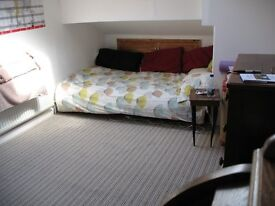 Lovely Sunlit Large Double Attic Room Own Bathroom in Friendly Large Victorian House in City Centre