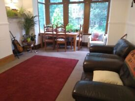 Room available in house share :)