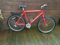 ADULT RALEIGH MAX MOUNTAIN BIKE WITH 24 gears