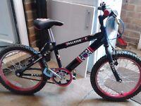 """Boys Raleigh Striker 18"""" wheel bike *EXCELLENT CONDITION*"""