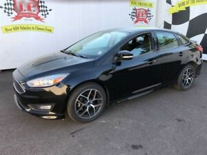 2017 Ford Focus SE, Automatic, Back Up Camera, 23,000km
