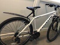 Coyote Arawak bicycle