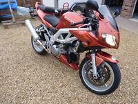 Suzuki SV 1000 - Bronze - 19k - 2003 - Great Condition