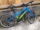Kids Pinnacle mountain bike for sale