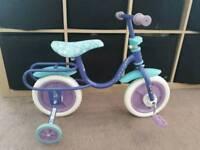 """Frozen bike (10"""")"""