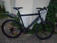 Mens Baracuda mountain bike