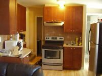 4 BEDROOM APARTMENT STEPS FROM UOTTAWA