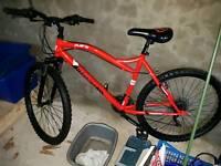 Muddy Fox Flare Mountain Bike. Adult. £60 ONO.