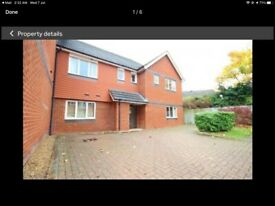 Newly decorated ground floor 1 bedroom flat - Tower Close, East Grinstead