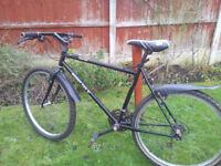 Muddy fox mens/youths mountain bike