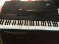 Digital Stage Piano 61 keys, with padded case
