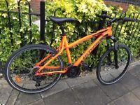 Adult Bike - Unisex