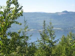 Shuswap lake view home for sale - appraised oct/16 298,000 as is