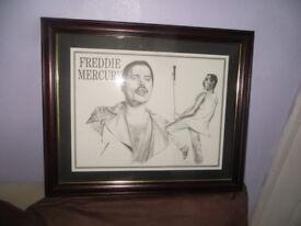 Freddie Mercury sketched print, Freddie Mercury of Queen picture
