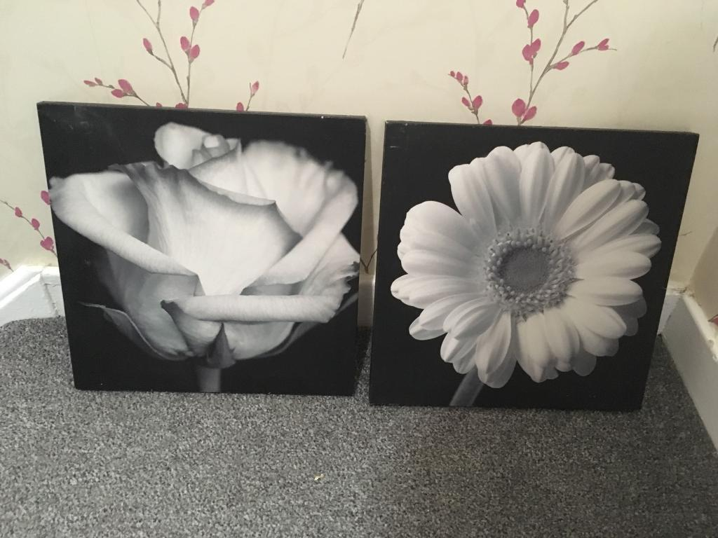 Black And White Flower Canvas Pictures In Runcorn Cheshire Gumtree