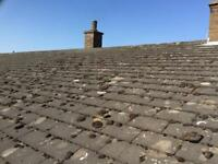 Concrete Pin tiles for pitched roofs