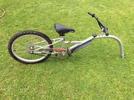 Probike Bike Buddy Tag Along Bike