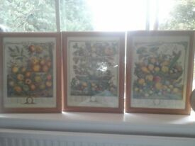 Three framed shabby chic pictures,STILL AVAIL