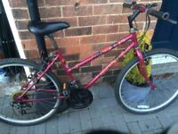 Pink Ladies Raleigh Bike