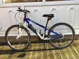 Apollo Childs Mountain Bike - Blue