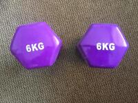 6kg dumbell weights