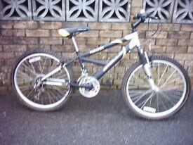 appolo mountain bike look