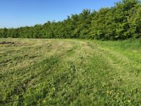 WOODLAND/AGRICULTURAL FIELD LAND WANTED, within 10 miles of ABERDEEN