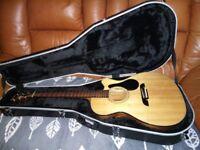 Alvarez AF30CE Acoustic Guitar