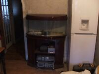 2 bow frounted fish tanks and one stand