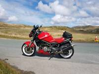 1000cc Suzuki tl MV Agusta Raptor.