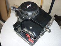 Rotary lawnmower engine