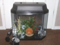 FISH TANK WITH HOOD LIGHT £25
