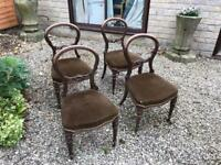 Mahogany balloon back dining chairs