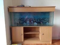 5ft fish tank + accessories