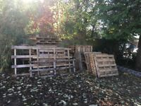 Free Wooden Pallets, collection only.