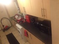 Double room in Fully-furnished 2-bed flat. 1st Feb