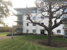 Luxury 2 bedroom apartment, THE BASE-BRENTWOOD STATION