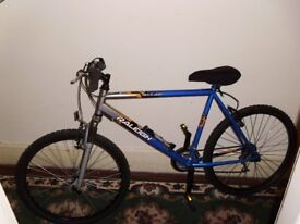 Raleigh Attitude very little useage in great condition