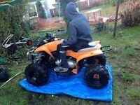 hurricane 150cc quad bike