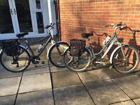 Adult City Bikes