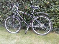 Giant Cypruss SX 6061 Hybrid bike