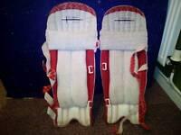 Cricket pads,batting gloves