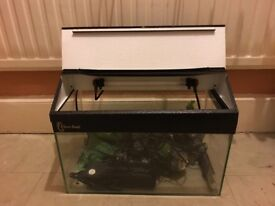 Clear Seal fish tank