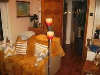 GREAT LAMP WITH 2 LIGHTS WITH GLASS SHADES - LOVELY GLOW