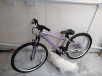 Girl Bicycle. 07713653950